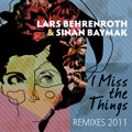 I Miss The Things Remixes 2011