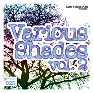 Various Artists - Lars Behrenroth presents Various Shades Vol.2 - DSOH025